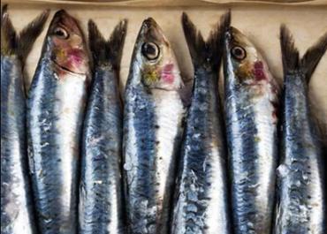 Неприємний запах в рибних магазинах